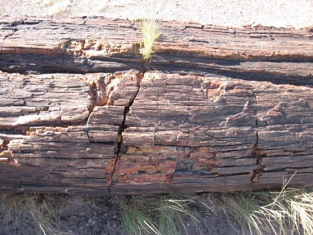 Sedona 2007 070
